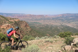 telluride to moabl